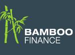 Bamboo-FInance-log-Blue5